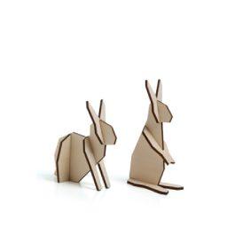 konijn hout knoopsschat aalter